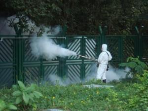 Καταπολέμηση κουνουπιών