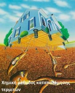 τερμίτες